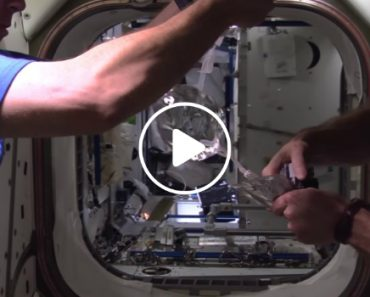 Space Station Astronauts Develop a Water Bubble In Space 3