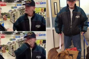 Veteran Tries Buying His Dogs Back From The Shelter. But Her Response? It's Going Viral. 9