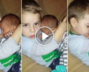 Adorable Boy Refuses To Give Baby Brother Back To Is Mom 6