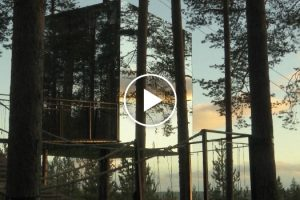 Sleep In The World's Most Futuristic-Looking Treehouse Hotel In Sweden 11