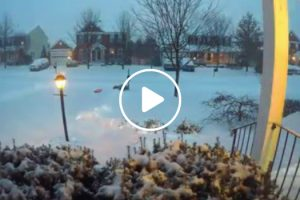 Winter Storm Jonas: 24 Hour Timelapse in 30 Seconds 12