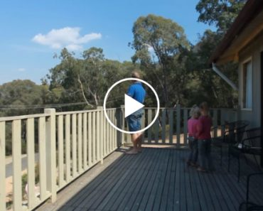He Steps Out Onto The Balcony And Starts Whistling… And Lives a Truly Magical Moment 5