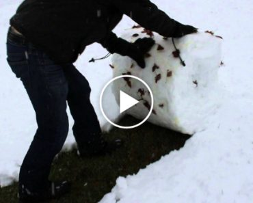 I'm Never Using a Snow Shovel Again, Everyone Should See What He Does 9