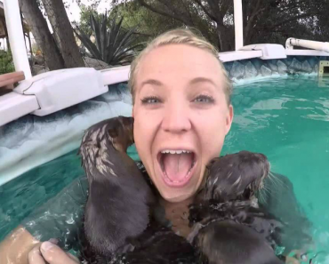 This Woman Jumped Into a Pool And Was Immediately Attacked… By So Much Cuteness! 1