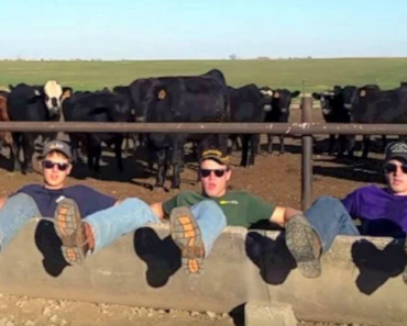 3 Brothers Had To Say This About Farming. But It's How They Did It That Left Me Smiling! 5