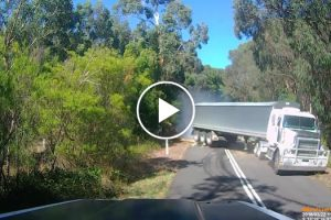 Truck Jackknifes After Hitting Fallen Tree In Terrifying Near-Miss At Carlisle River 11