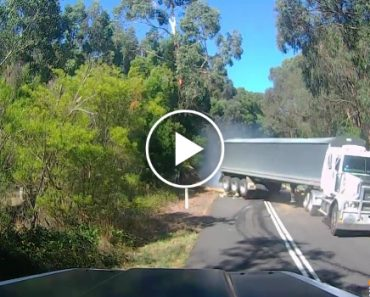 Truck Jackknifes After Hitting Fallen Tree In Terrifying Near-Miss At Carlisle River 2