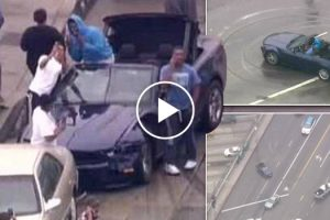 Here's An Insane Ford Mustang Police Chase With a Hilarious News Commentary 10