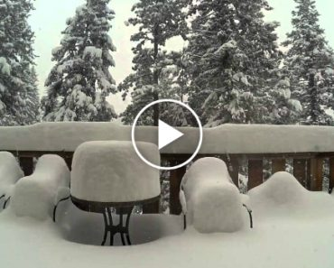 Time-Lapse Video Shows Nearly 4 Foot Snowfall In 36 Hours 6