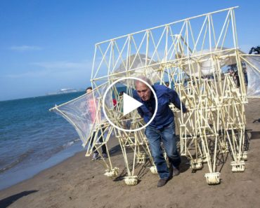 Adam Savage Gleefully Marvels at Theo Jansen's Strandbeest During Its Visit to San Francisco 8