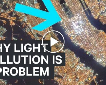 Why Light Pollution Is A Problem 4