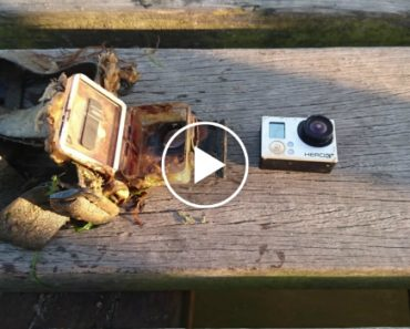 Fisherman Catches GoPro Camera With Old Fishing Footage Still Intact 1