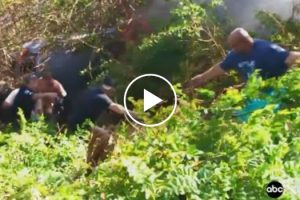 Cops And Good Samaritans Form A Human Chain To Rescue A Man From A Burning Car! 10