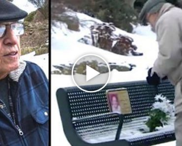 Widower Visits Deceased Wife's Bench To Find A Mysterious Stranger Made A Change Without Asking 7