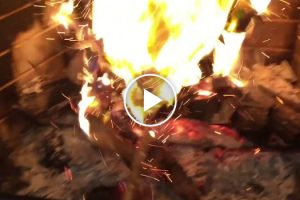 Dad Pranks Sassy Kids By Tossing An Empty Present Into The Fire 12