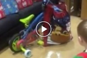 Adorable Little Boy Shows The Truest Spirit Of Christmas 12
