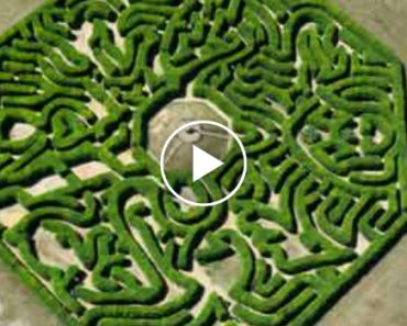Have A Look Inside The Mind Of The World's Greatest Maze Designer 5