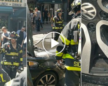 Fire Department Called To Put Out Car Fire Started By Rats 1
