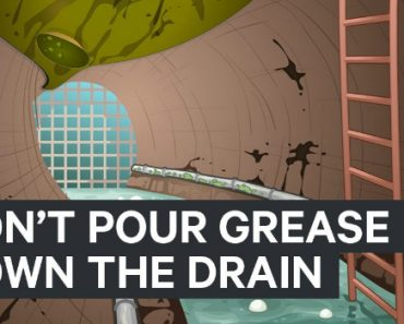 Why You Should Never Pour Grease Down The Drain 5