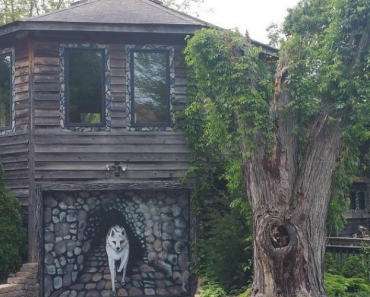 Artist Spends 35 Years Transforming Her House Into a Woodsy Wolves' Den 8