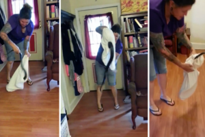 Woman Walks Into Her Home And Finds a 5 Foot Black Snake In Her Living Room 10