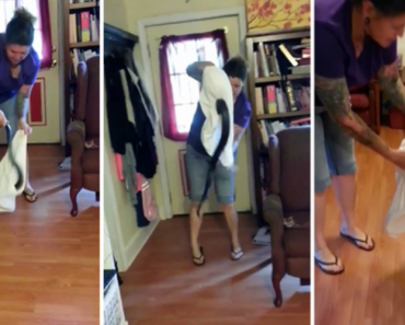 Woman Walks Into Her Home And Finds a 5 Foot Black Snake In Her Living Room 3