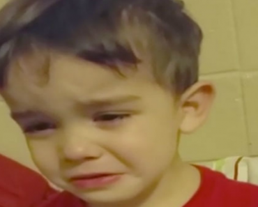 """Little Boy In Tears Because Dinner Is """"Too Cute To Eat,"""" Leaves Us In Stitches! 6"""