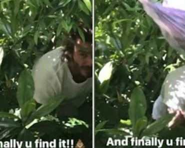 David Beckham Throws Dog Poo At Wife Victoria As She Teases Him In Playful Video 4