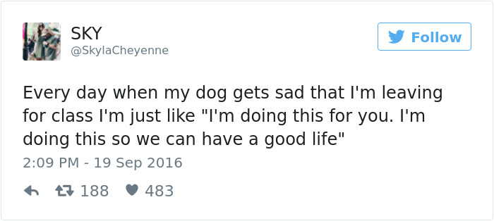 12 Funny Dog Tweets That Are Too Relatable 5