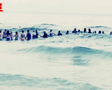 80 Beachgoers Form a Human Chain To Rescue a Family Caught In a Rip Current 4