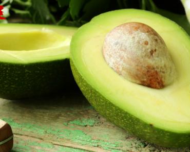 Why Avocados Shouldn't Exist 6