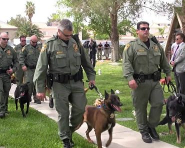 "Police Dogs Give An Emotional ""Bark Of Honor"" For a Fallen K9 Lost In The Line Of Duty 5"