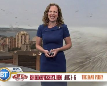 When a Giant Seagull Bombards Your Weather Report 4