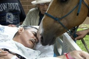Man On His Deathbed Gets a Heartfelt Goodbye From His Two Best Friends, His Horses! 11