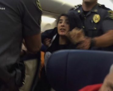 Woman Claiming Pet Allergy Dragged Off Southwest Flight 3
