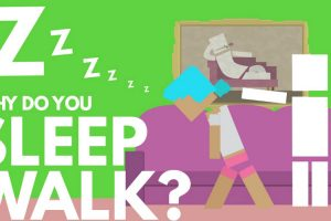An Animated Explanation of What Happens When a Person Sleepwalks 11