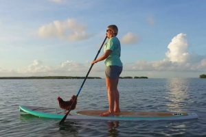 You've Seen Surfing Dogs Before, But A Surfing Chicken? That's New 10