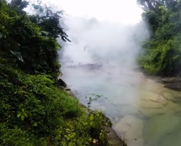 The Amazon's Boiling River Kills Anything That Enters 3