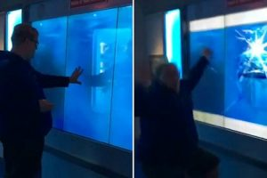 "Man Scared By ""Shark"" In Washington Museum 12"
