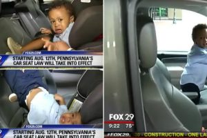 The Funniest Tiny Toddler Temper Tantrum On Live Television. Hilarious! 12