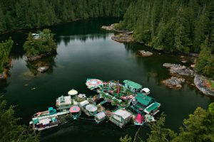Meet The Couple Who Built Their Own Floating Island 11