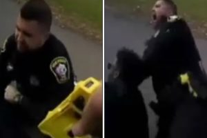 Police Officer Accidentally Tasers Partner Trying to Subdue Suspect 10
