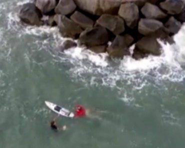 8th Grader on Surfboard Saves Man from Capsized Boat 4