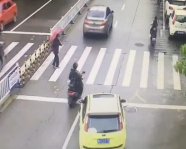 Driver Blocks Traffic To Make Way For Elderly Woman Crossing Road 3