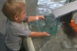 Little Boy Can't Understand Why Wire Bucket Can't Hold Water 12