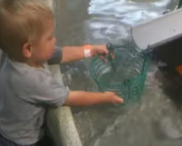Little Boy Can't Understand Why Wire Bucket Can't Hold Water 8