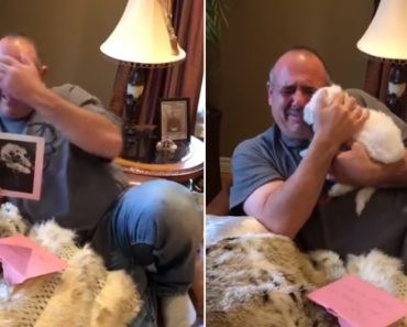 Mourning Father Welcomes New Dog Into Family 2
