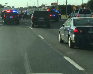 Guy Accidentally Enters A Slow High-Speed Chase On The Freeway 9