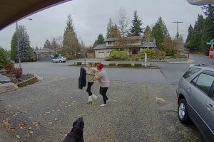 Nanny Runs Down Package Thief After Getaway Car Takes Off 11