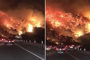 This Video Of Los Angeles Wildfire Looks Literally Like Hell On Earth 12